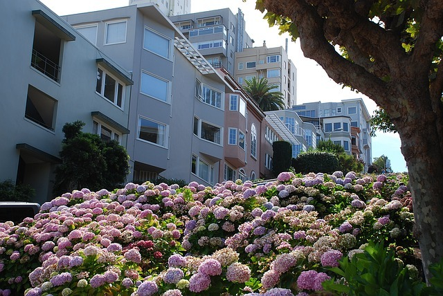Homes found on Lombard Street in Russian Hill