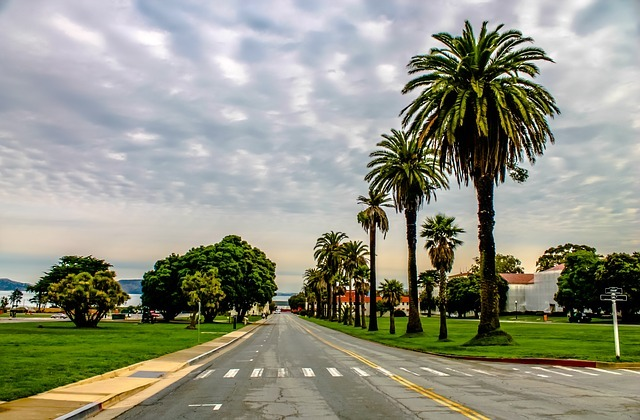 The Presidio features offices, historic sites, and scenic views