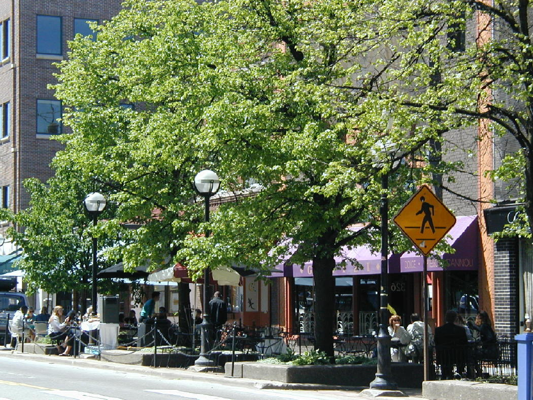 Downtown Ann Arbor Restaurants