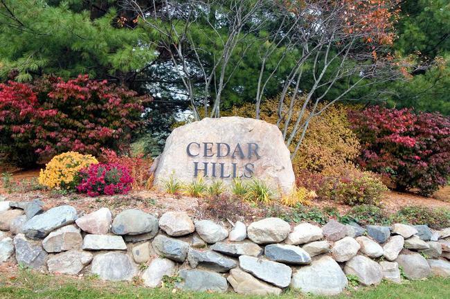 Cedar Hills, Dexter MI Entrance