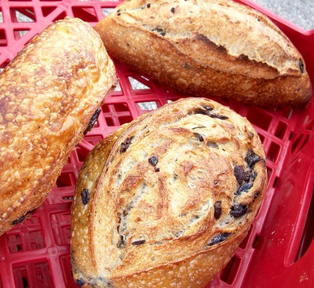 bread on a rack in an Italian bakery