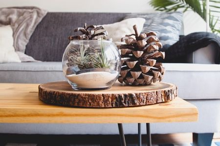 A wooden coffee table decorated with a terrarium and pine cones, with a grey couch in the background.