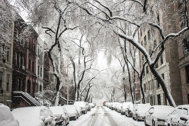 Cobble Hill features tree-lined streets and historic homes