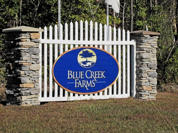 Blue Creek Farms