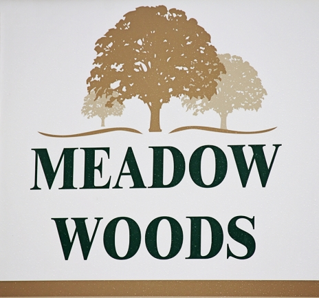 Meadow Woods Entrance