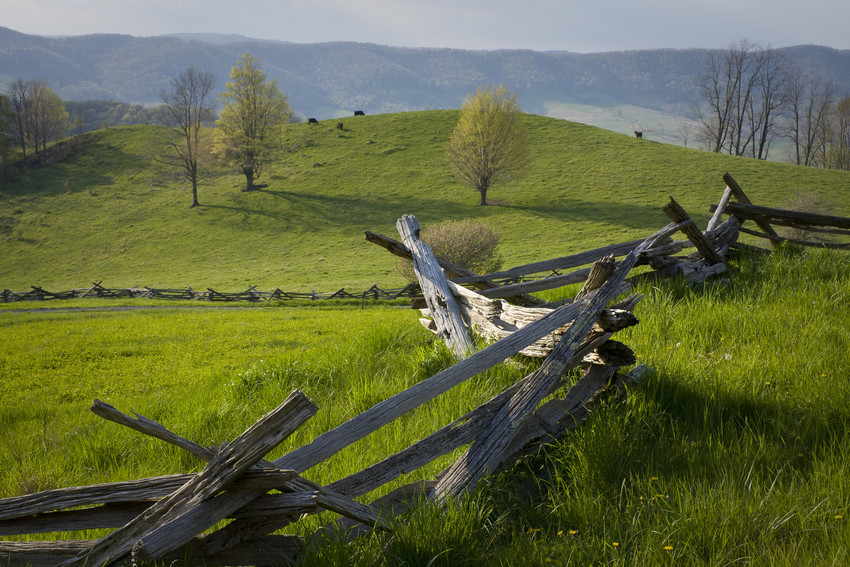 rich history of ranching