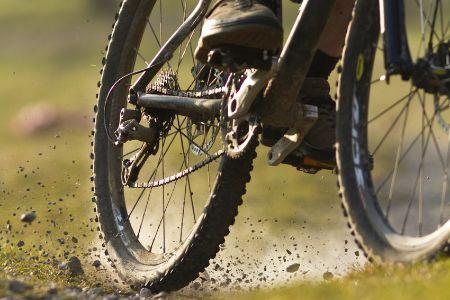 Bike tire on a beaten path.