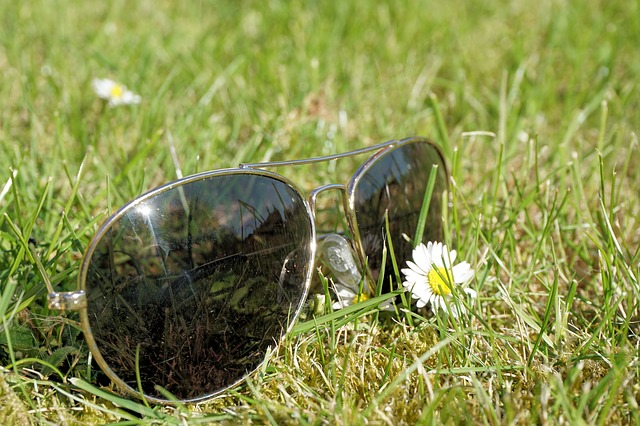 a pair of sunglasses in a field outside
