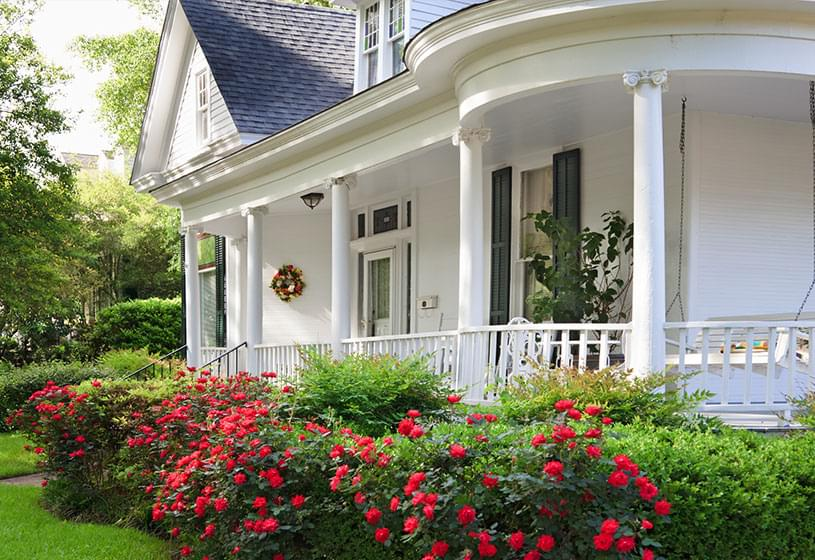 White house with porch swing and bushes with bright flowers in the front yard