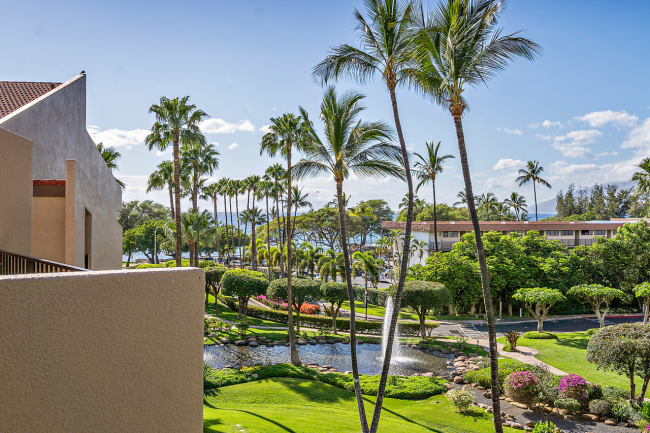 Perfectly Framed By The Lush Landscaping Of The Central Courtyard At Kamaole Sands
