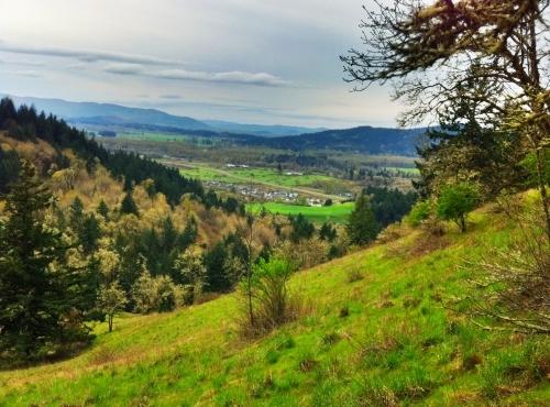 Thurston Hills