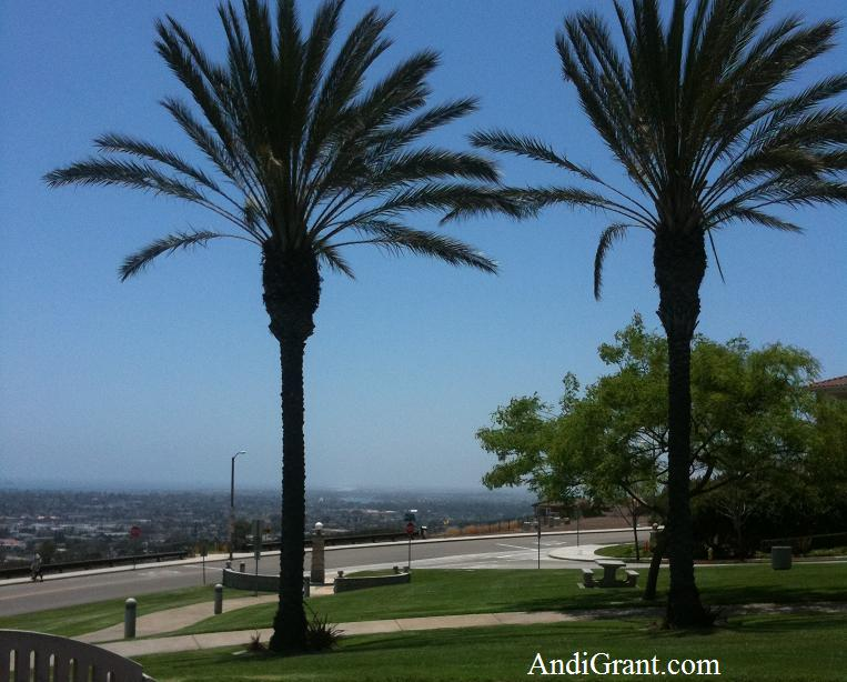 Signal Hill overlooking Long Beach