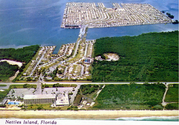 Nettles Island Florida Map Nettles Island