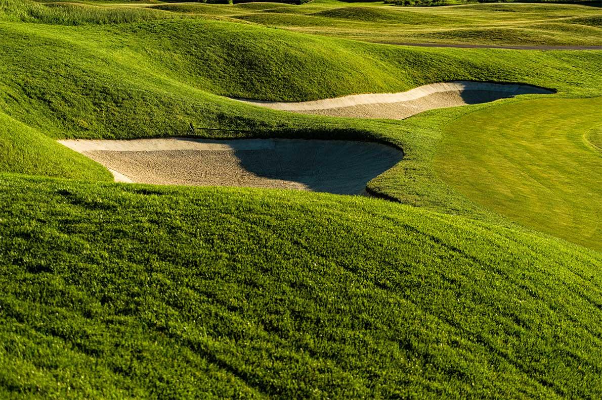 golfing at royal oaks