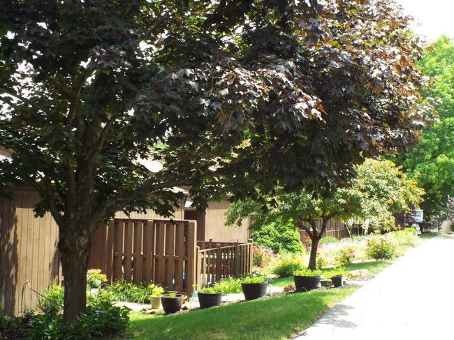 Willolake Townhouse Community