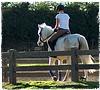 Oregon Horse Property for Sale
