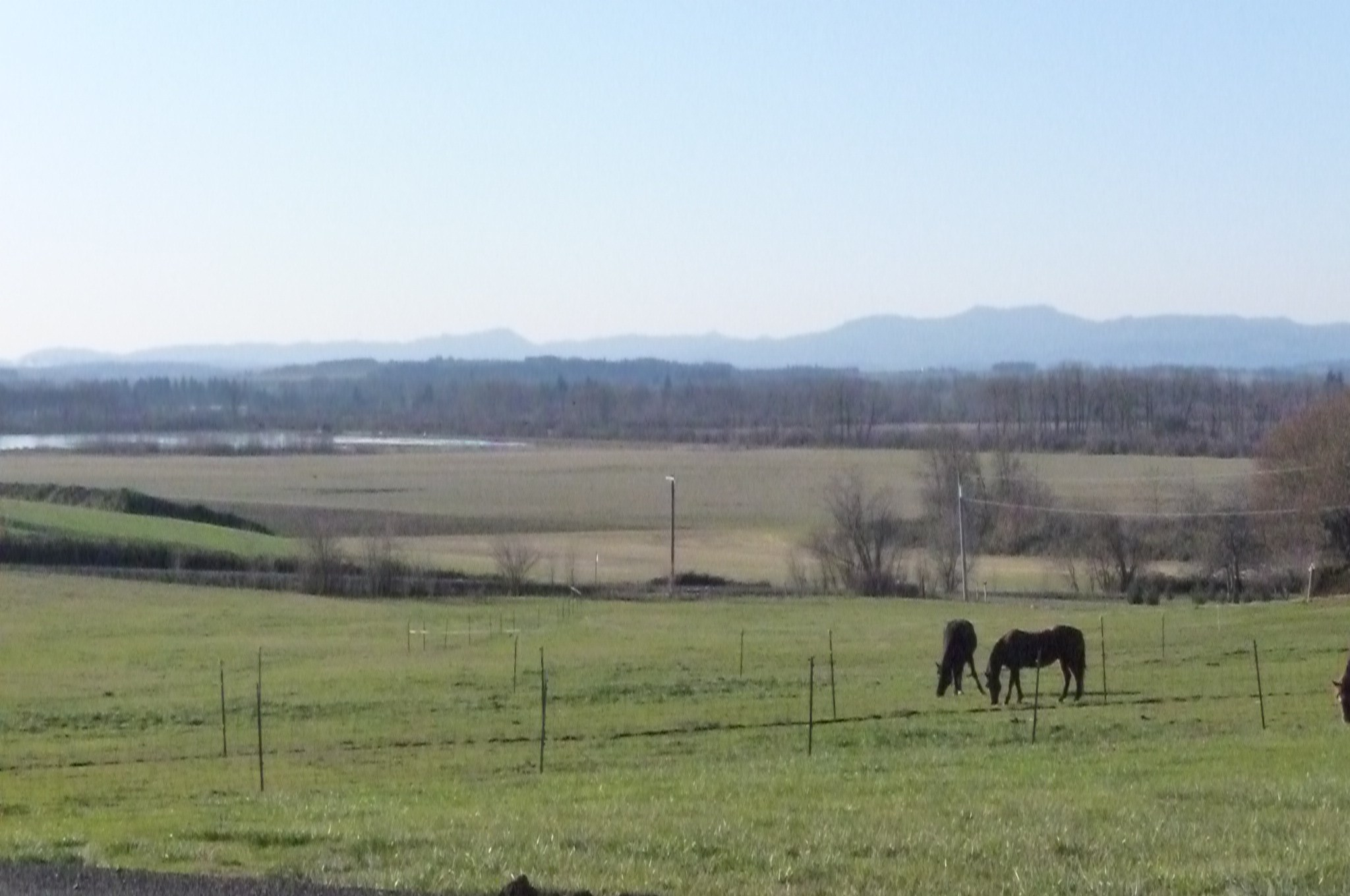 View to the West from Spring Lake Estates.  The pasture in front is part of the subdivision, and is probably the flatest parcel in the subdivision.