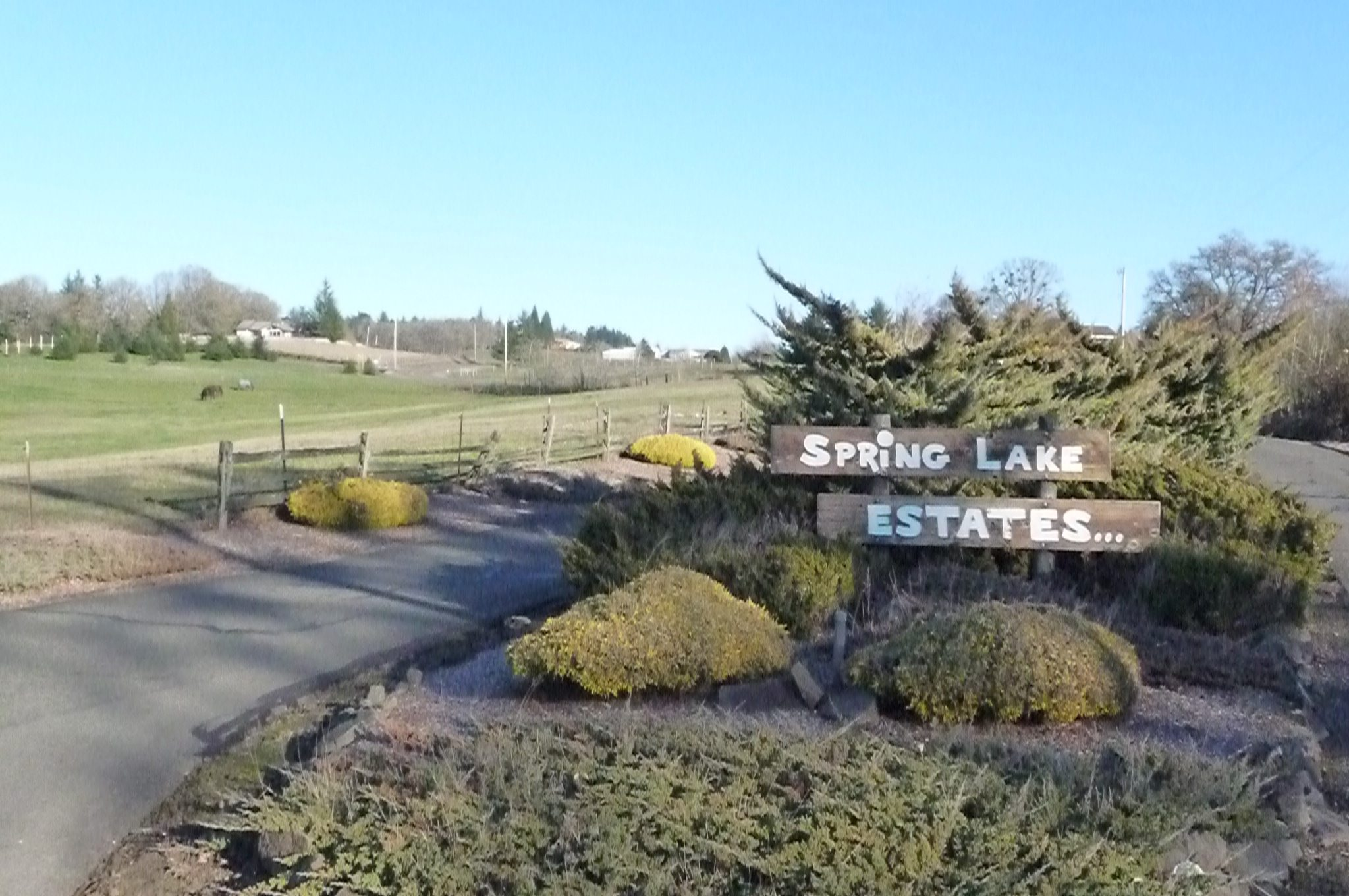 Entrance to Spring Lake Estates in Salem Oregon.  A second entrance is located off of Liberty RD, this one is from Ankeny Hill Rd, just a quick exit off I5.  Spring Lake Estates is an equine friendly subdivision in Salem, Oregon.