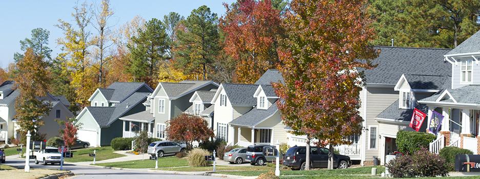 Houses on street in Apex NC