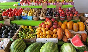 Farmer's Market in Holly Springs