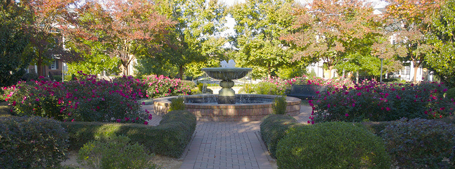 Knightdale, NC fountain
