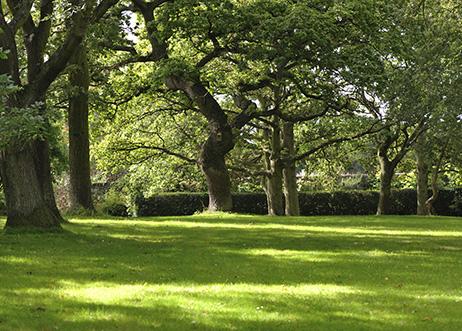 E. Carroll Joyner Park in Wake Forest