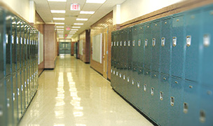Schools in Johnston County