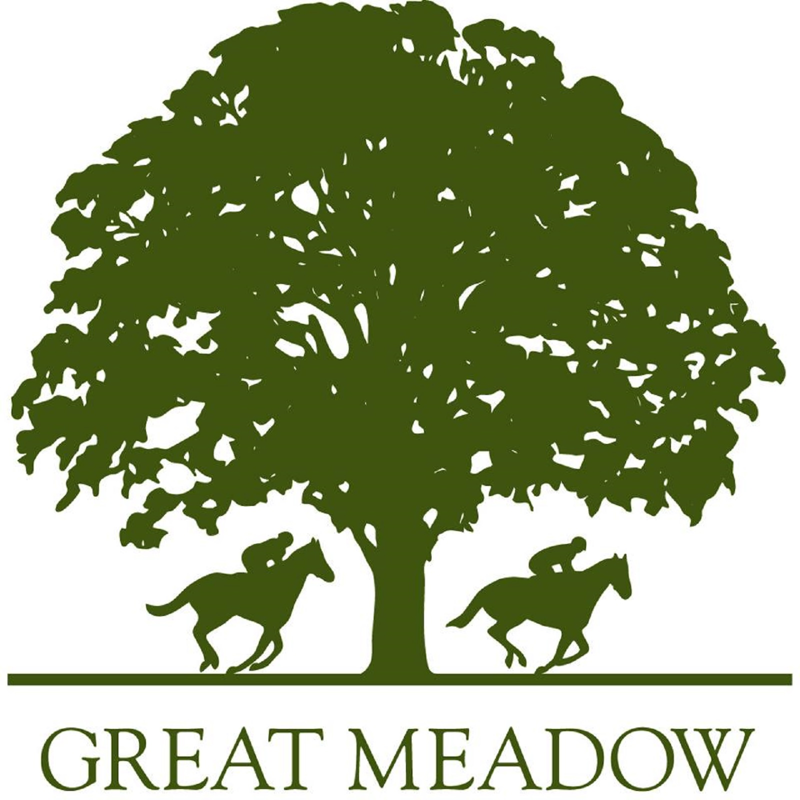 Jeff Wilson Supports Great Meadow Charity Organization