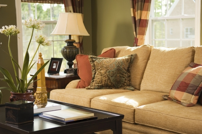 Country Brook Neighborhood homes offer spacious living rooms