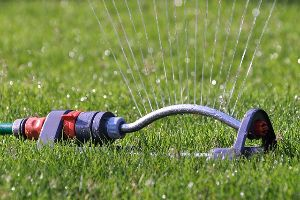 A sprinkler watering a grassy lawn.
