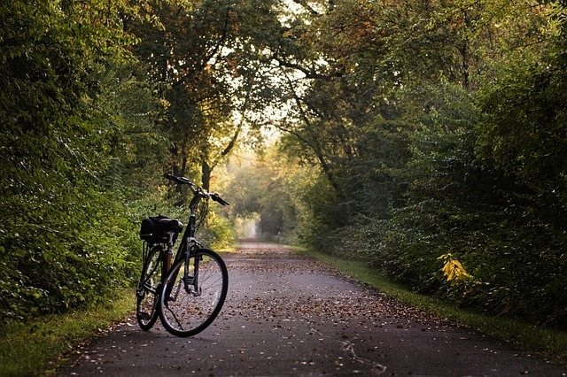 Charleston Village is close to local greenway trails