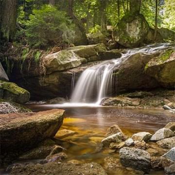 rocky waterfall in beautiful woodland setting