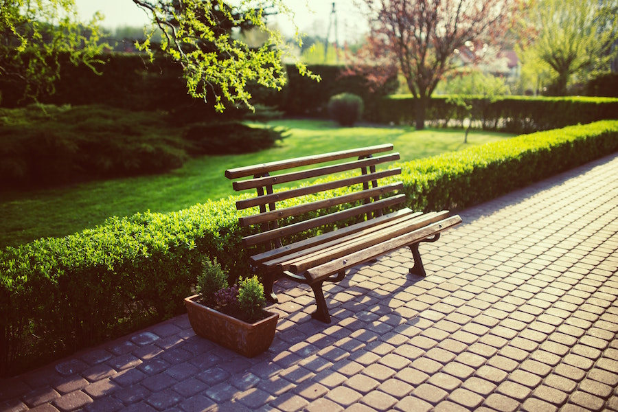 Park bench near grass