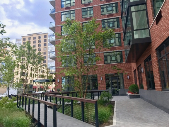Gorgeous Landscaping around 1400 Hudson in Hoboken, NJ