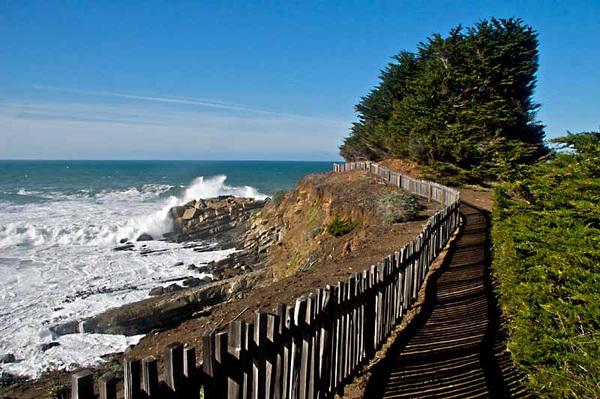 hiking trail by the ocean near The Sea Ranch