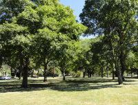 Hough Park