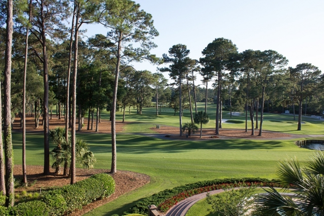 Retreat to the lush landscaping and rolling fairways of Charleston National.