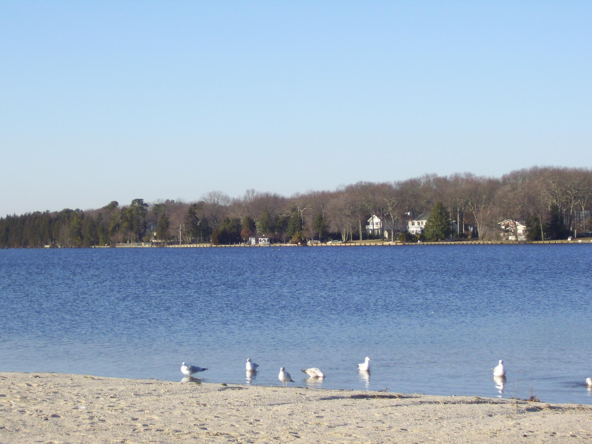 Stafford Township, NJ