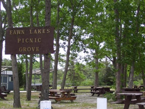 Fawn Lakes Picnic Area
