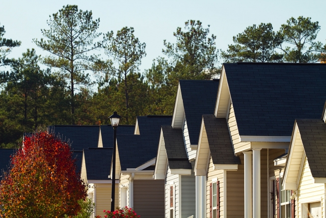 Beautiful homes, scenic tree-lined streets, and plenty of amenities await at Renaissance Park.