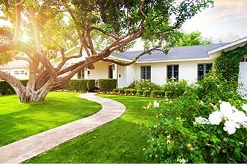 house with green, sunlit front yard