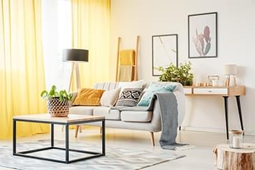 sun-filled living room with houseplant