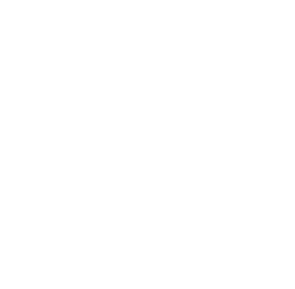 DASH Carolina - Brand Guidelines