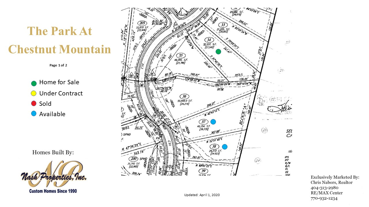 Site Plan for Chestnut Mountain - Page 1
