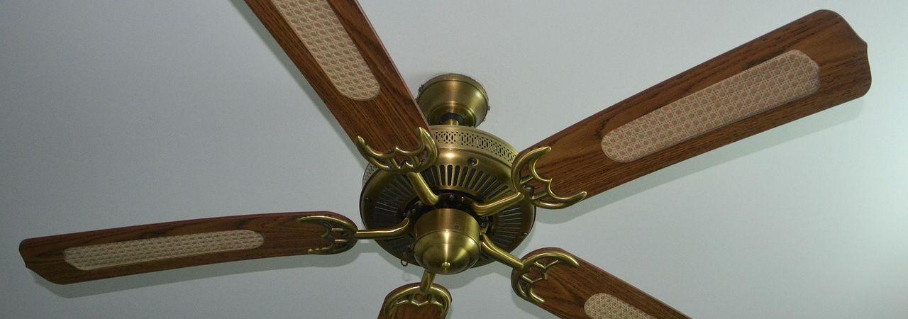 raleigh outdoor fan