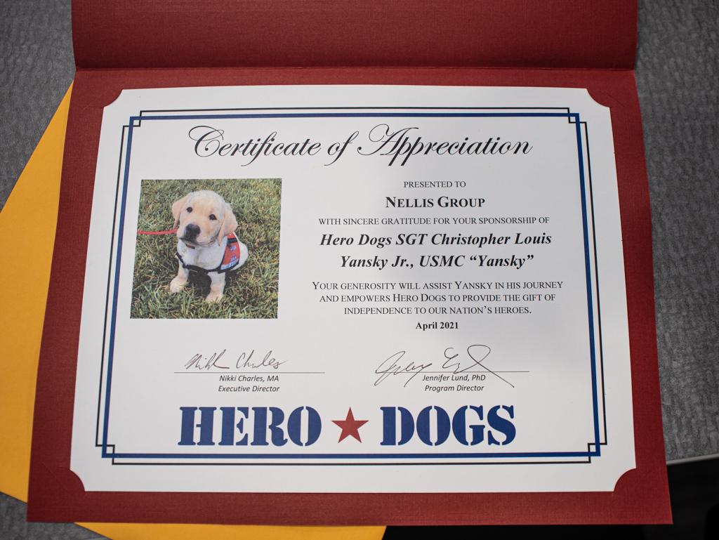 Certificate Yansky Puppy
