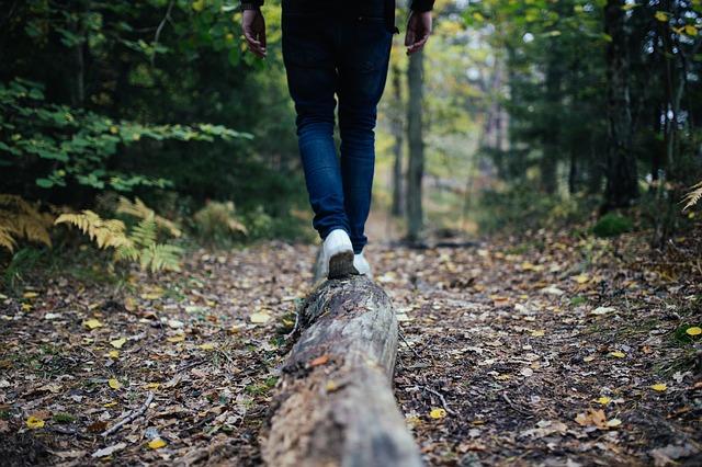 A hiker balancing on a fallen log on a leaf-strewn nature trail.