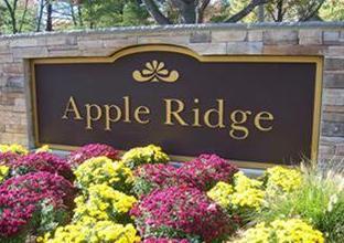 apple ridge
