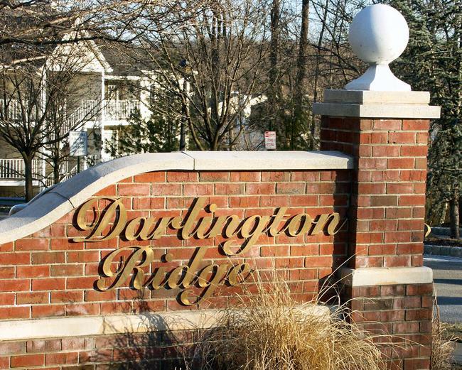 darlington_ridge