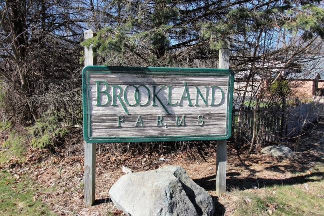 Brookland Farms Subdivision Homes for Sale